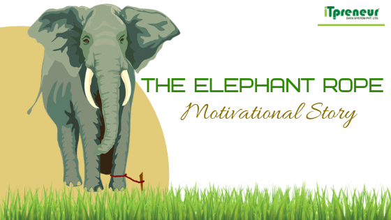 The Elephant Rope Motivational Story